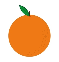 whole orange icon vector image