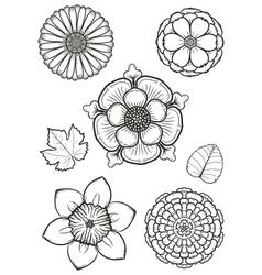 flowers 001 vector image