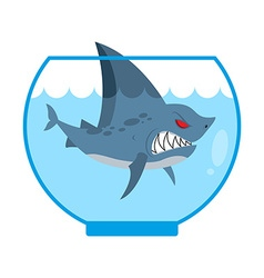 Shark in Aquarium Angry Marine predator with large vector image