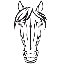 pony face vector image vector image