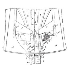 apparel corset is the equivalent of a garment vector image