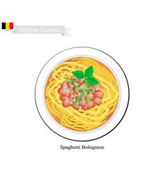 Belgian belgium spaghetti bolognese spagetti vector