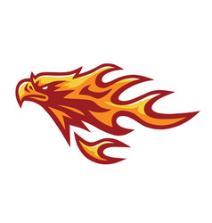 fire eagle phoenix falcon hawk head flame logo vector image