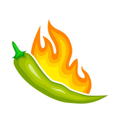 hot green pepper icon fire pungency vector image