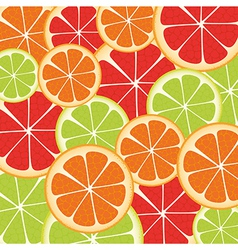 Background of many slices of citrus fruit vector