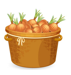 A basket of onion vector