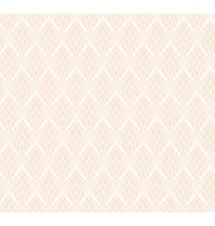Abstract White Lace seamless pattern background vector