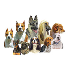Big and small dog breeds vector