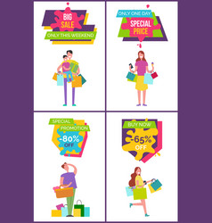 big sale only this weekend set vector image