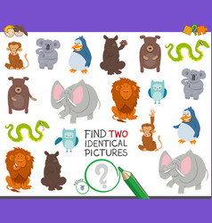 Find two identical animals task for kids vector