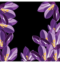 Floral pattern with crocus hand-drawing vector