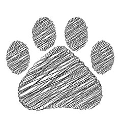 hand drawn doodle style cat footprint vector image