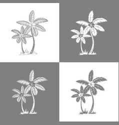 palm trees and leaves grey line silhouette vector image
