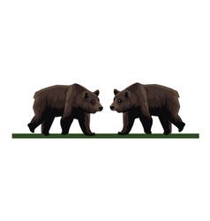 Wild bears beasts animals icons vector