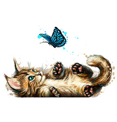 a kitten is playing with a butterfly wall sticker vector image