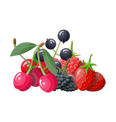 Berry icon set vector