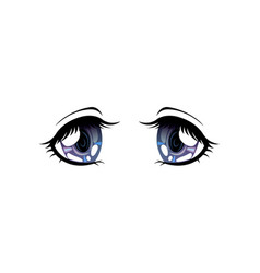 bright eyes grey colors beautiful eyes vector image