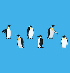 flat penguins on a blue background collection vector image