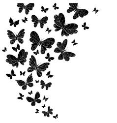 Flowing curving design flying butterflies vector