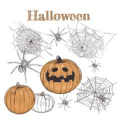 halloween pumpkin sketch vector image