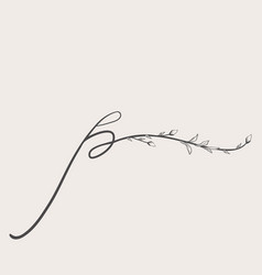 hand drawn floral p monogram and logo vector image