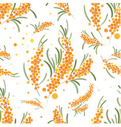 Seabuckthorn seamless pattern abstract vector