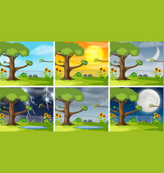 set of nature pack background vector image