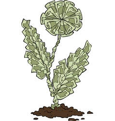 flower of banknotes vector image vector image