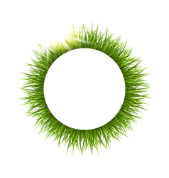 Circle frame with grass and sunlight Floral nature vector image