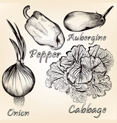 Collection of hand drawn vegetables for design vector