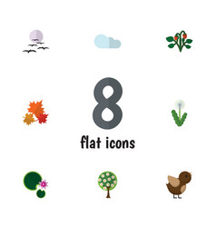 flat icon bio set of floral lotus bird and other vector image