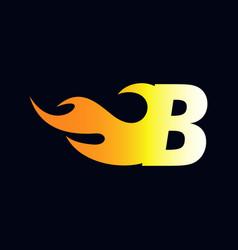 Initial flame b vector