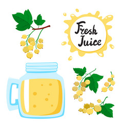 Juice with currants in a glass bank vector