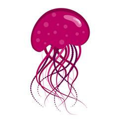 Purple jellyfish vector