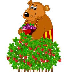 Beautiful bear and raspberry vector