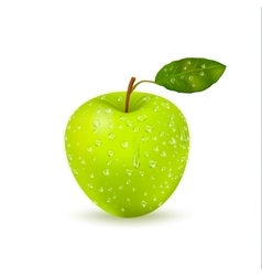 Isolated Wet Green Apple With Water Drops vector