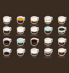 Isometric infographic with coffee types vector