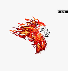 Lion head fire vector