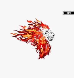 lion head fire vector image