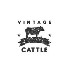 vintage cattle logo graphic design template vector image