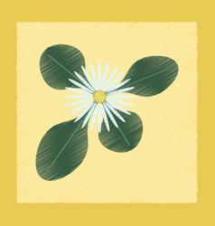 flat shading style plant bellis vector image