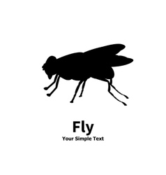a silhouette of a fly vector image
