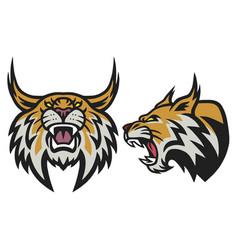 Bobcat lynx wildcat angry roaring esports logo vector