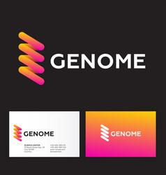 Genetics logo dna spiral logo business card vector