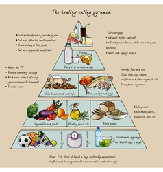Healthy eating pyramid vector