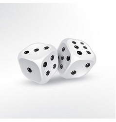 two dice on white background vector image