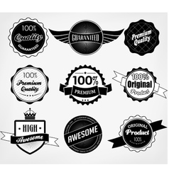 Set of Premium Quality and Guarantee Labels vector image