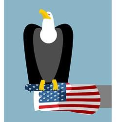 American patriotic eagle hunting Bald eagle vector image