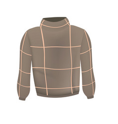 brown sweater vector image