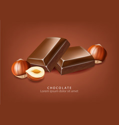 chocolate realistic candies and nuts close up vector image